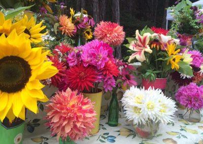 Tara Q Flowers