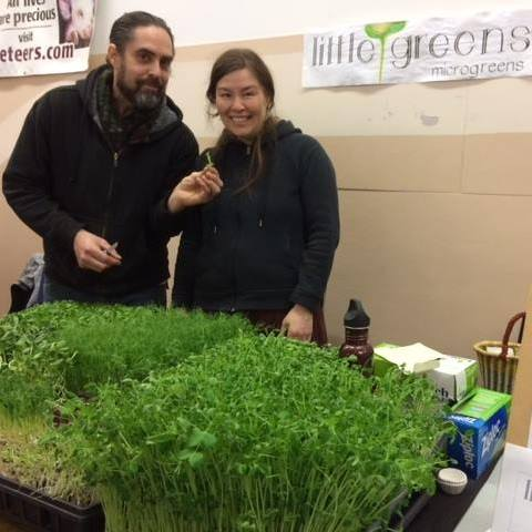 Little Greens Microgreens
