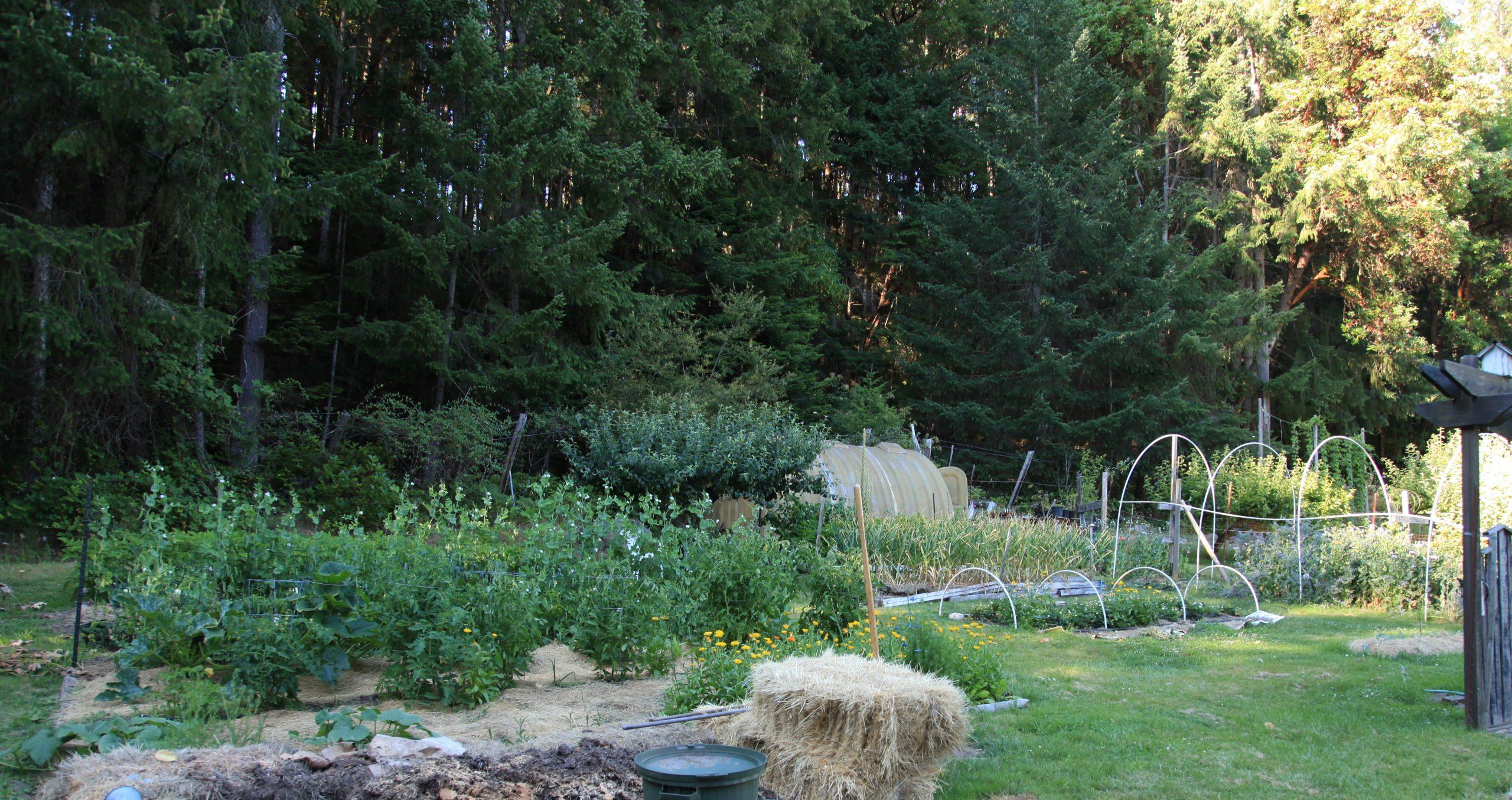 Castlerock Farm
